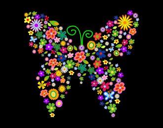 La leyenda maya sobre las mariposas